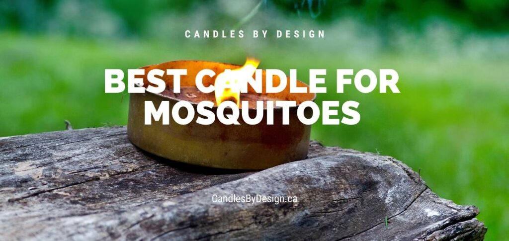 Best Candle for Mosquitoes